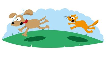 perro asustado: Gato enojado caza un perro