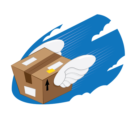 a vector representing a funny cartoon bird-winged landing package, fast and express delivery concept.