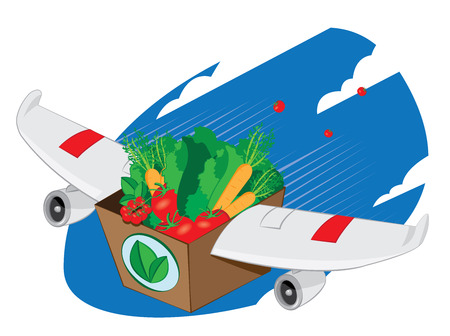 a vector cartoon representing an airplane winged carton packing full of fresh vegetables and fruit flying and landing - online order and very fast shipping concept