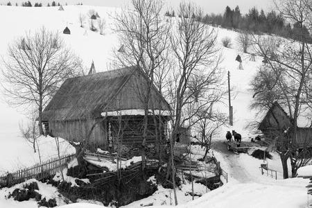 farmhouse with animals near the snowy mountains