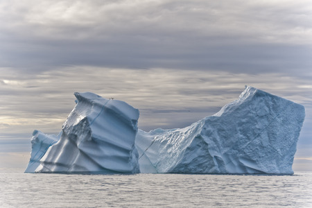 icefjord: Icebergs of polar regions, Greenland