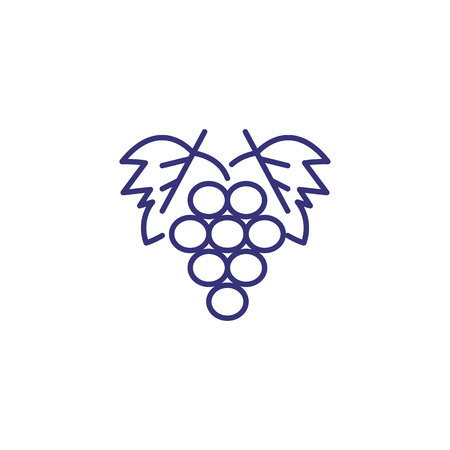 Bunch of grapes line icon. Dessert, harvest, market. Fruit concept. Vector illustration can be used for topics like vineyard, winery, agriculture