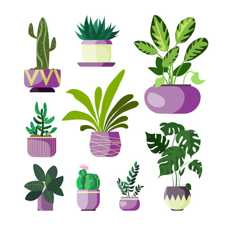 Flowers in pots set. Collection of houseplants. Can be used for topics like decoration, gardening, floriculture Illustration