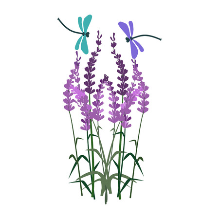Violet delphinium illustration. Flower, plant, nature. Spring concept. Vector illustration can be used for topics like garden, field flowers, nature