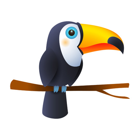 Toucan bird sitting on branch. Tropical forest bird with bright beak. Can be used for topics like animal, nature, habitat