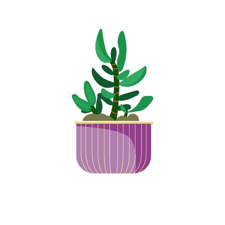 Houseplant in pot illustration. Green, pot, leaf. Home decoration concept. illustration can be used for topics like design, interior, natural decorations