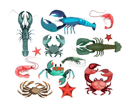 Crustaceans and starfishes set. Sea creature collection. Can be used for topics like seafood, ocean, restaurant 版權商用圖片