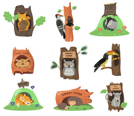 Forest animals in hollows flat illustration set. Cartoon squirrel, fox, owl or bird in oak tree holes isolated vector illustration collection. House in trunk and decoration concept Illusztráció