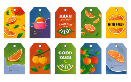 Citrus tags set. Whole and cut fruits, orange tree branches vector illustrations with text. Food and drink concept for fresh bar labels, greeting cards, postcards design Stock Illustratie