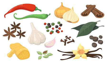 Colorful spicy spices and vegetables flat item set. Cartoon fresh garlic, white onion, hot chili, allspice for sauce isolated vector illustration collection. Seasoning, condiment and cooking concept