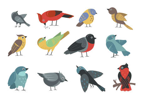 Various colorful small birds set. Cute cartoon little sparrow, swallow, bullfinch, thrush, tit isolated on white. Vector illustration for wildlife, nature, animal concept Vecteurs