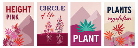 Bright pink cannabis posters design with bushes. Dark brochure for marijuana smoking store. Hemp plantation and legal drug concept. Template for promotional leaflet or flyer