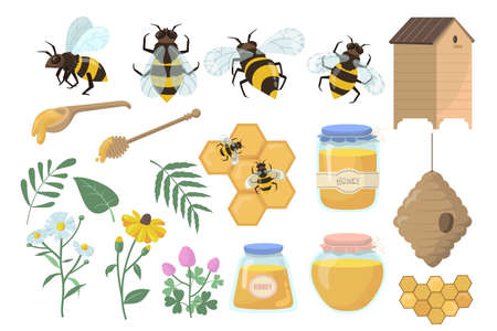 Bees and honey set. Flowers, beehive and honeycombs, jar, pot and dipper isolated on white background. Vector illustrations collection for apiary, beekeeping, organic food production, farming concept