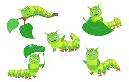 Cartoon funny caterpillar set. Happy cute little green bug worm eating leaf, walking, sleeping isolated on white background. Vector illustration for nature, wildlife, comics for children concept