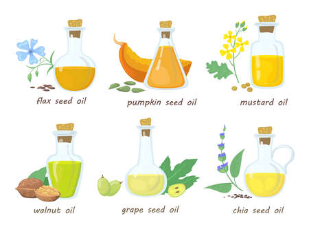 Set of cartoon vegetable virgin oils in glass jars. Flat vector illustration. Colorful mustard, walnut, pumpkin, grape, chia seed oils in white background. Food, vegan, natural, health concept 向量圖像