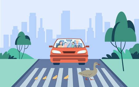 Cute mother duck with kids crossing road. Car, crossroad, city flat vector illustration. Birds and animals concept for banner, website design or landing web page