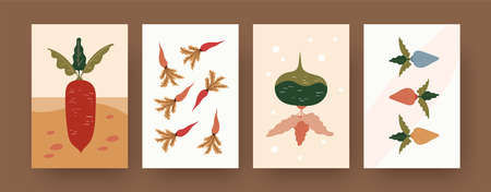 Set of contemporary art posters with carrots and beetroot. Root vegetables in soil cartoon vector illustrations. Gardening, organic food concept for designs, social media, postcards, invitation cards