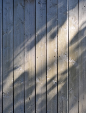 sunlight and shadow from the tree on plank fence Stock Photo