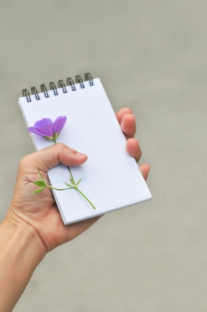 close up of hand holding blank notepad and violet single flower, on white background