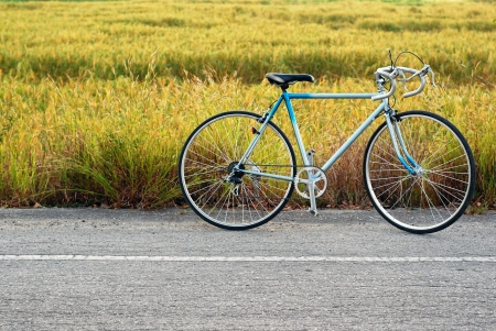 vintage bicycle standing on the road , rice field on the background