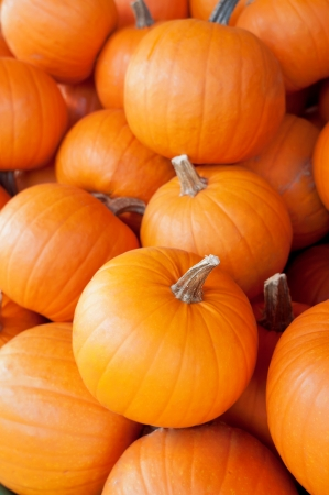 A pile of pumpkins in the fresh market Stock Photo