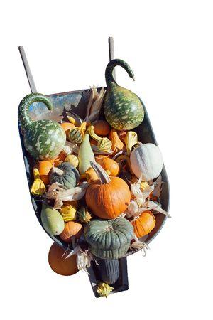 wheel barrel: A wheel barrel with a variety of decorative squash Stock Photo