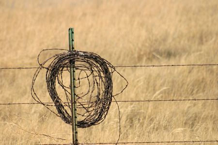A roll of barbed wire on a fence Stock Photo - 261944