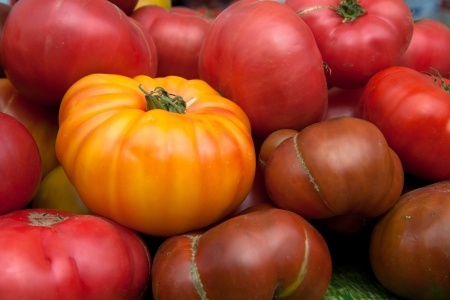 Heirloom tomatoes Reklamní fotografie