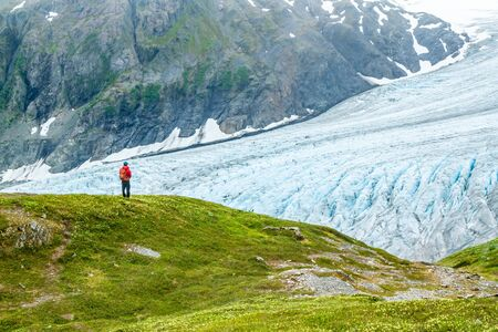 A man in a red jacket is gazing out over Exit Glacier in Alaska, USA. Man is standing on green grass covered hill overlooking glacier from the Harding Icefield Trail.