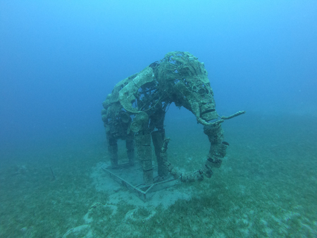 Underwater statue of an elephant in the Red Sea off Dahab, Egypt
