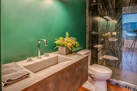 Cool bathroom with green wall, large shower and concrete sink Archivio Fotografico