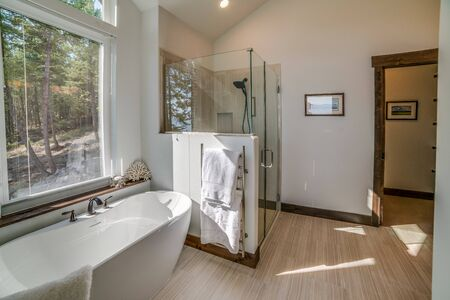 Efficiently spaced master bathroom shower and freestanding tub