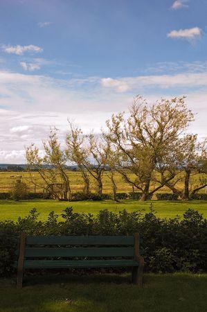 Rang�e d'arbres dans les domaines de la Grand-Pr� avec un BECH de se reposer sur  Banque d'images