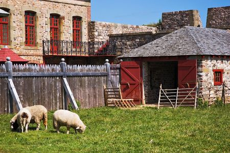 Louisbourg farm building with sheep grazing Stock Photo