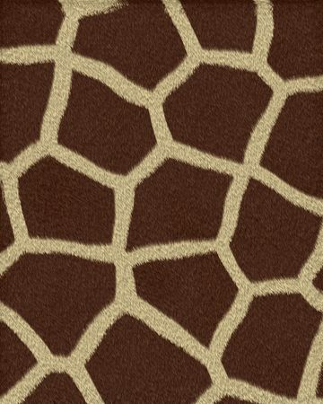giraffe large spots short fur textured background photo
