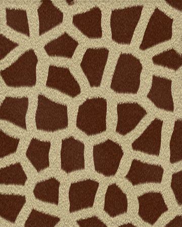 giraffe medium spots short fur textured background