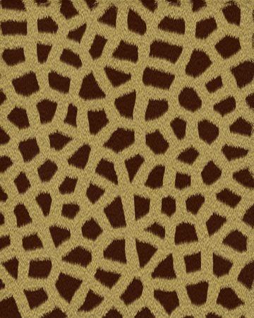 giraffe small spots short fur textured background photo