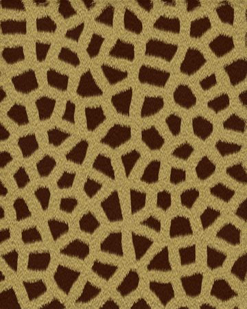 giraffe small spots short fur textured background