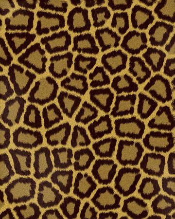 grandes taches de l�opard court fourrure textur�