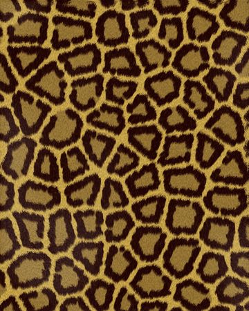 leopard large spots short fur textured background