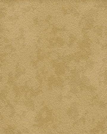 puma court fourrure textur� Banque d'images
