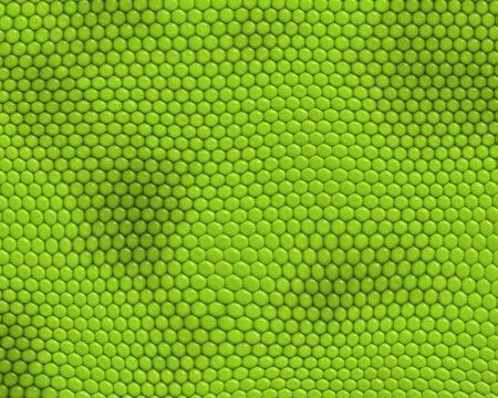 reptile skin background of iguana Stock Photo