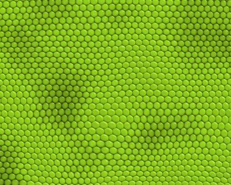 reptile skin background of iguana Stock Photo