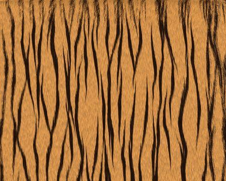 tiger big fuzzy short fur textured background Stock Photo
