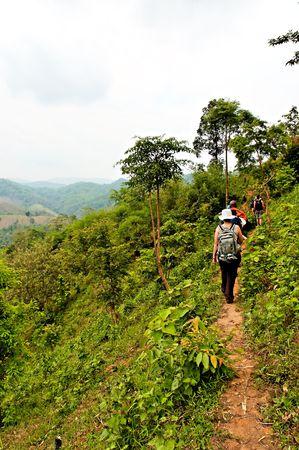 Voyageurs de randonn�e dans les montagnes de la jungle dans le Nord de la Tha�lande