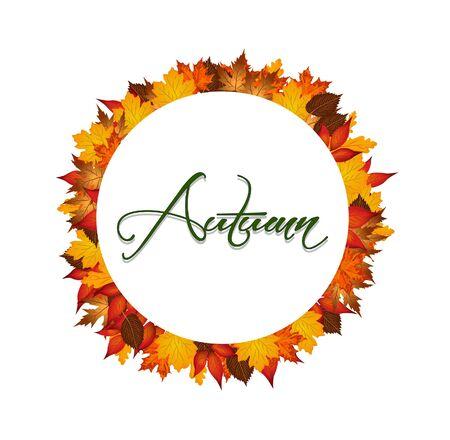 autumn colors: Autumn leaves around circle with word autumn