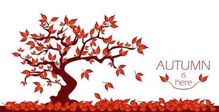 Red autumn tree with words autumn is here. Breech tree with falling leaves