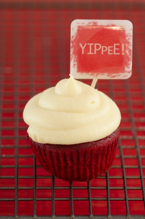 One cream cupcake with the message: Yippee!