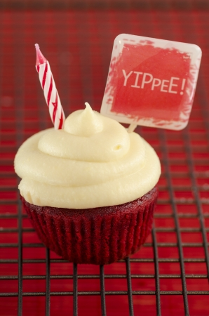Cupcake with candle and a red tag with the words  Yippee