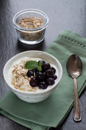 Blueberry and Oats on Yogurt
